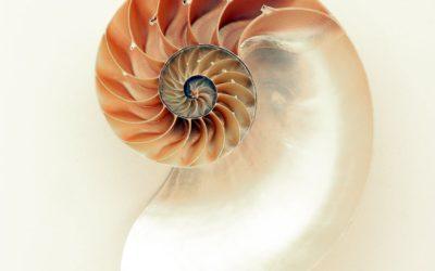 1 technique d'Auto-hypnose facile : la spirale sensorielle